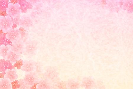 Flower background of plum plum