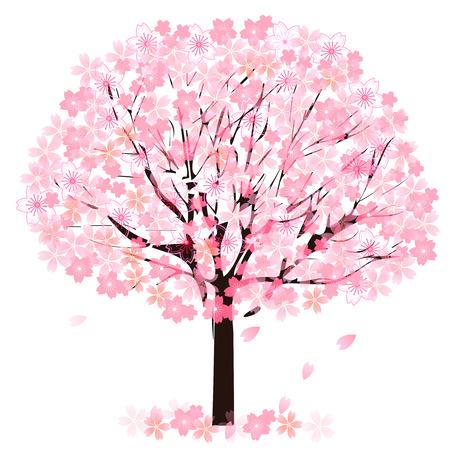 Arbol de flor de cereza