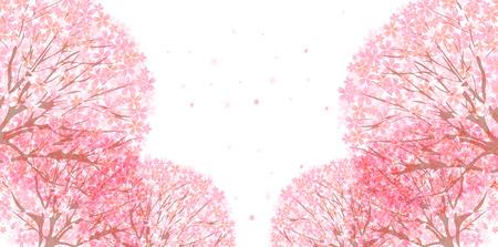 Kirschblüte Hintergrund Standard-Bild - 35645570