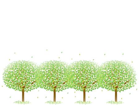 feuille arbre: Feuille arbre vert frais