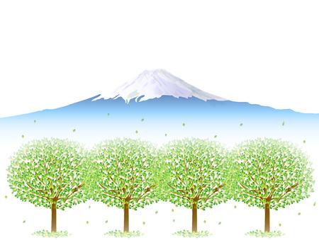 富士の葉の背景  イラスト・ベクター素材
