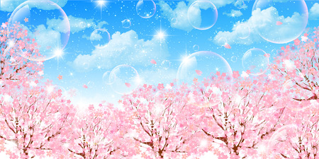 spring landscape: Cherry sky background