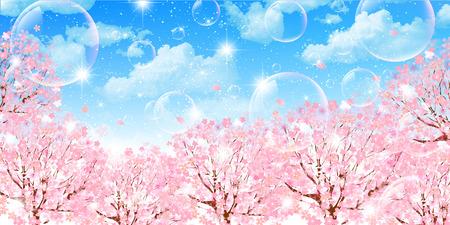 Fond de ciel de cerise