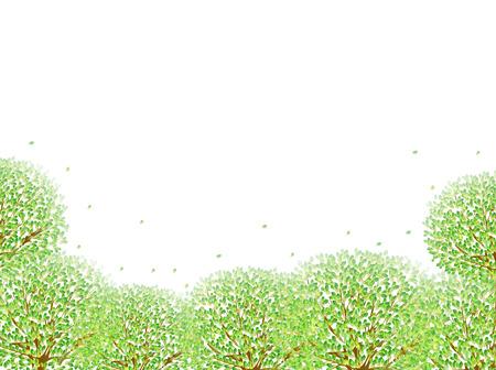 aoba: Leaf fresh green background Stock Photo