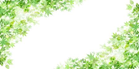 Leaf fresh green background Vectores