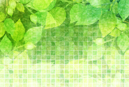 Leaf fresh green background Vector