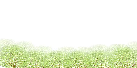 ツリーの葉の新緑 写真素材 - 36667360