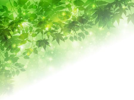 early spring: Leaf fresh green background Illustration