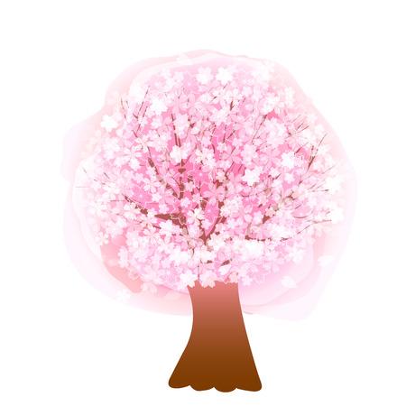blossom tree: Cherry blossom tree