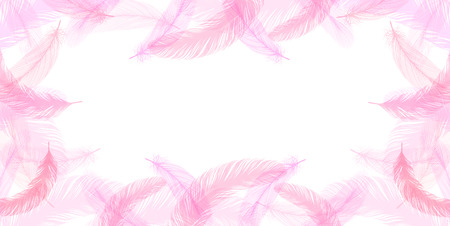 Feather pink background
