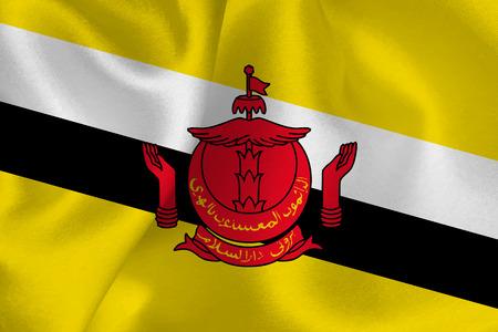 flag: Brunei national flag flag Illustration