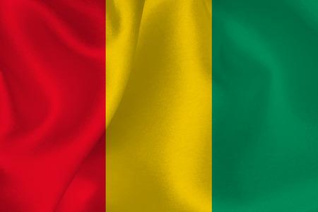 flag: Guinea flag flag