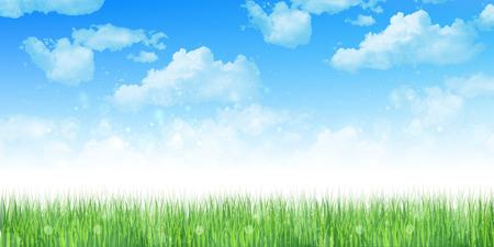 prato e cielo: Grass sfondo del cielo