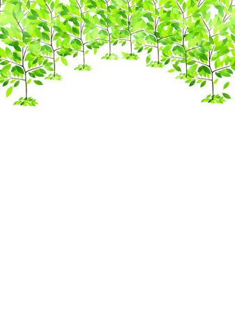 葉新鮮な緑の背景 写真素材 - 37753089
