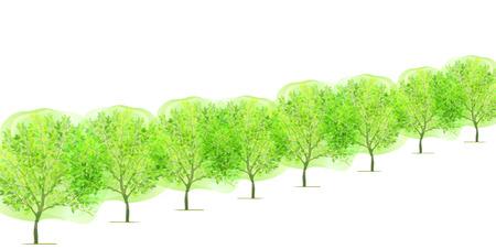 ツリーの新鮮な緑の背景