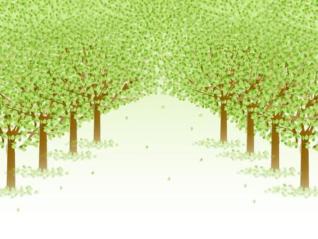 aoba: Tree fresh green background