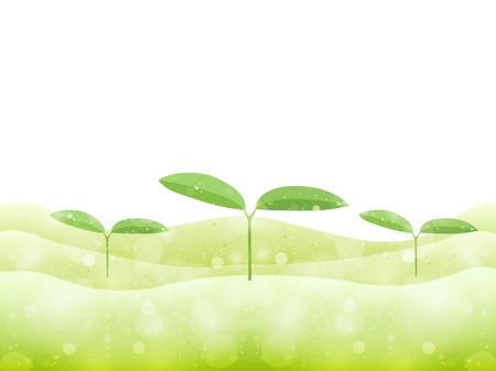 early spring: Leaf bud background Illustration