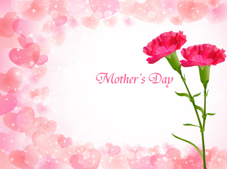 carnations: Carnation Mother  's Day background