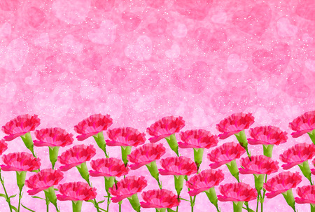 the carnation: Carnation Mother  's Day background