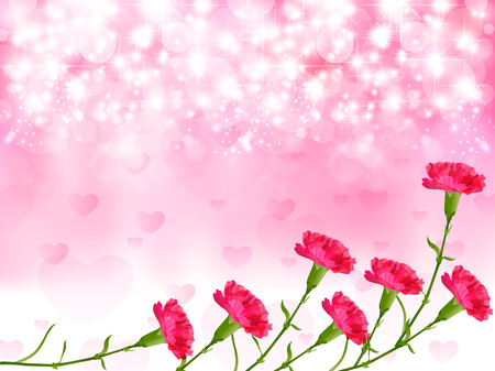 carnation: Carnation Mother \  's Day background