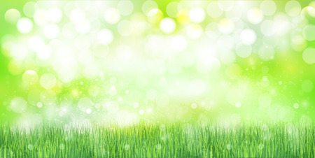young leaf: Grass sky background