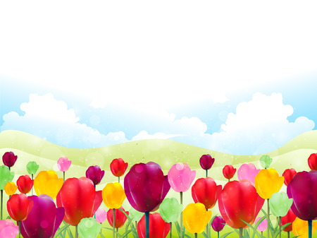 Tulip flower background Ilustrace