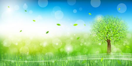 folha: Folha de árvore verde fresco