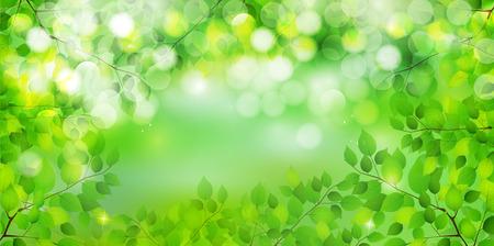 葉新鮮な緑の背景 写真素材 - 38105181