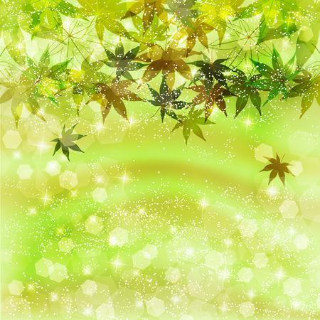 young leaf: Leaf maple background Illustration