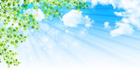 葉メープルの背景