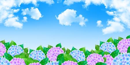 the season: Hydrangea rainy season background Stock Photo