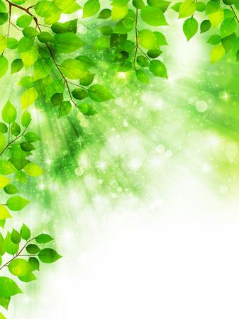 Leaf fresh green background 向量圖像