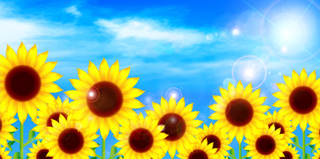 Sunflower flower background Vector