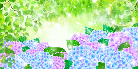 Hydrangea rainy season background Иллюстрация