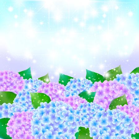 rainy season: Hydrangea rainy season background Illustration