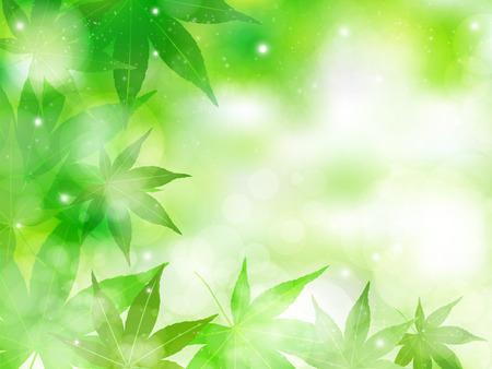 カエデの葉の背景