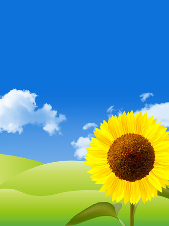 Sunflower sky background Vector