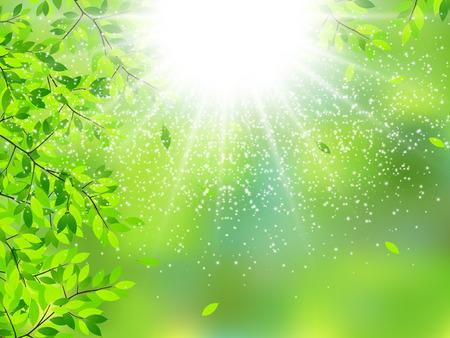 green it: It leaves fresh green background