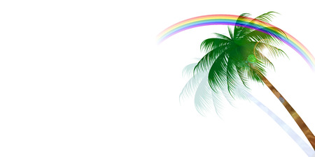 rainbow background: Palm rainbow background