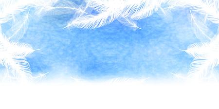 羽空の背景