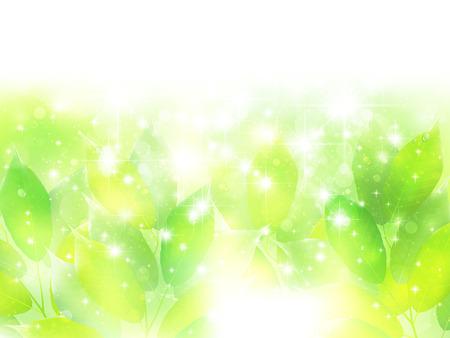 Early summer background leaf