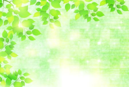 Begin van de zomer achtergrond blad