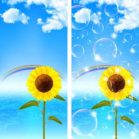 Sunflower Sea background Vector