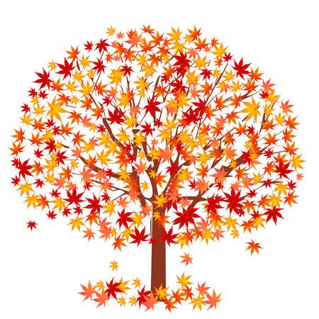Maple arbre feuillage Banque d'images - 40743851