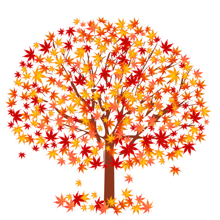 Maple foliage tree Illustration