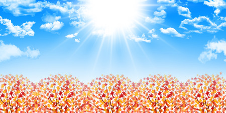 foliage: Maple foliage background