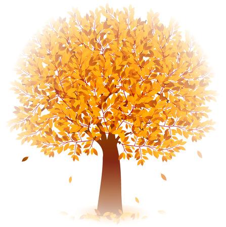 yellow trees: Maple foliage icon