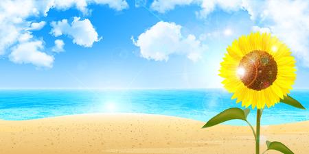 Sunflower Sea background