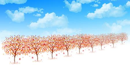 clouds blue sky: Maple foliage background