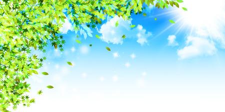 Frisches grünes Blatt Hintergrund Standard-Bild - 42120952
